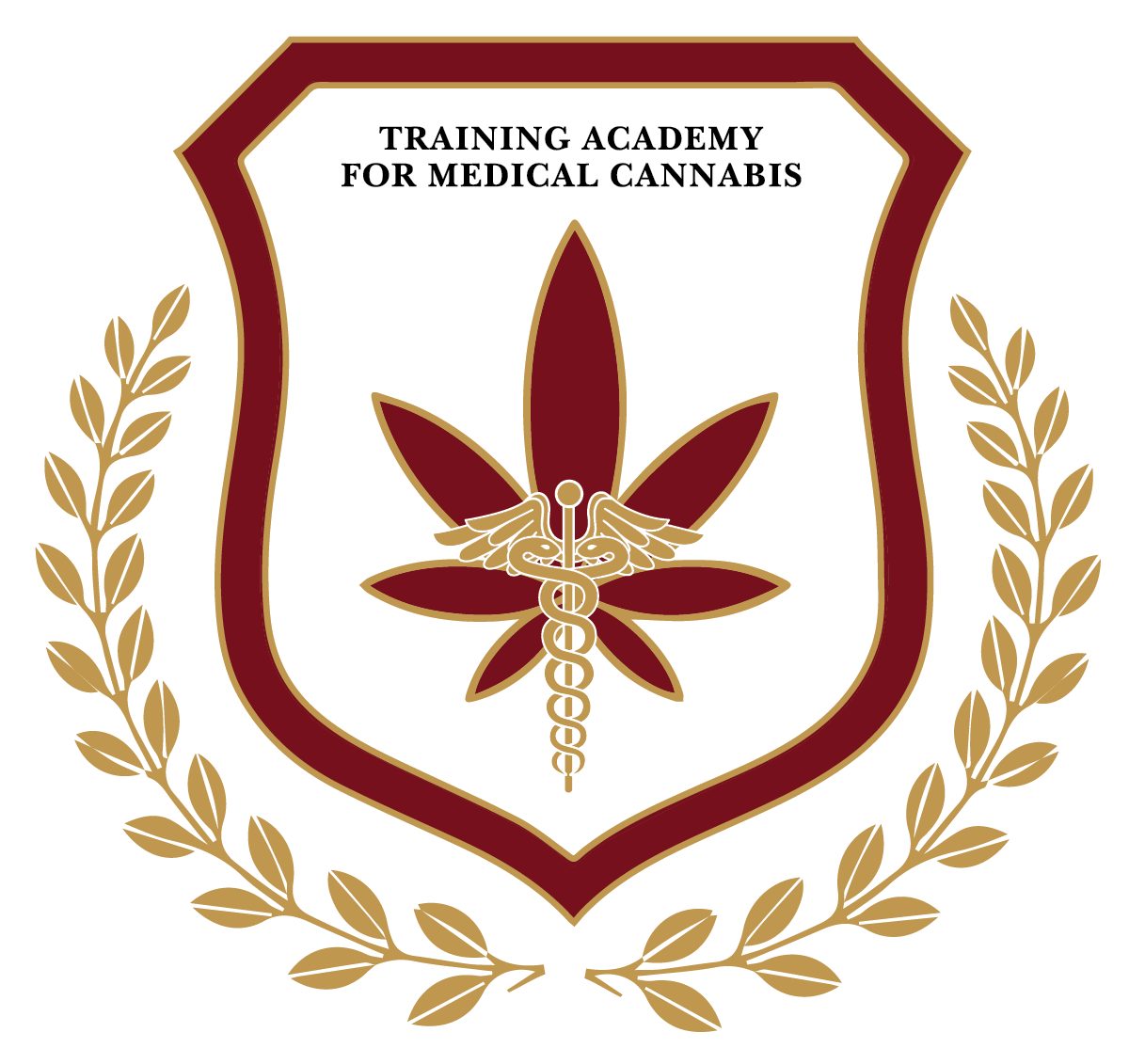 training academy for medical cannabis